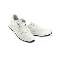 Мужские кроссовки кожаные весна/осень белые-белые Lions R16
